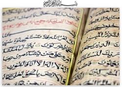 Growing up Muslim post 9/11: Hiding my Arab and Muslim Identity